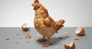 """Vỏ trứng gà được ví là """"thần dược"""" trong cuộc sống"""