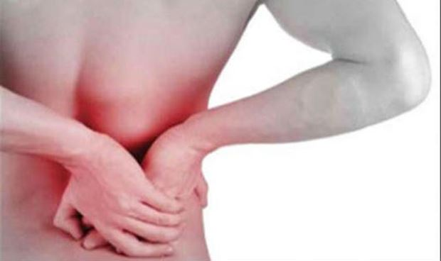 Bài thuốc quý chữa bệnh đau nhức xương khớp