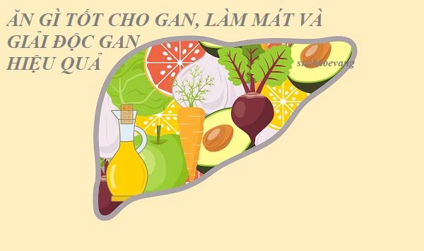Ăn Gì Tốt Cho Gan?