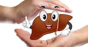 Trình dược viên tư vấn cách giải độc gan hiệu quả tại nhà